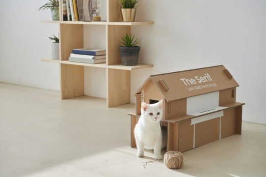 Samsung The Serif QLED TV Eco-Friendly Packaging Cat Home