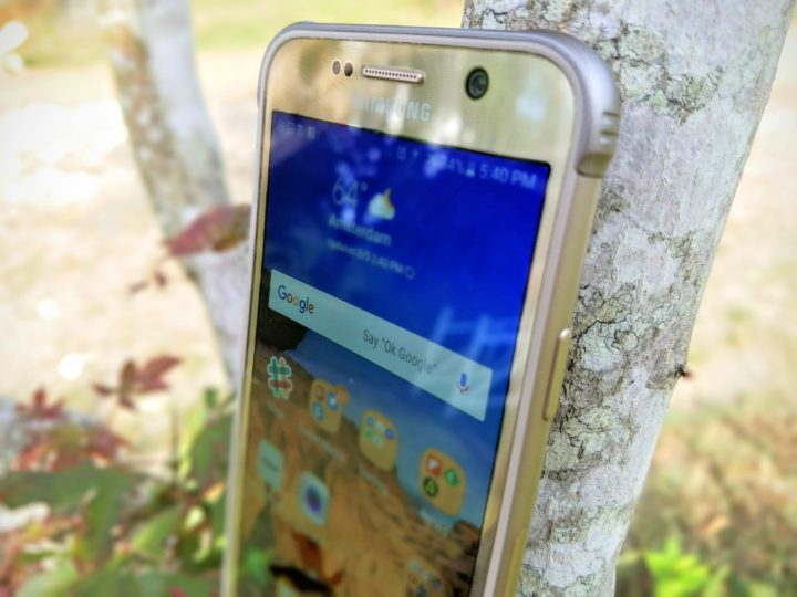 Galaxy S7 Active sitting in the tree