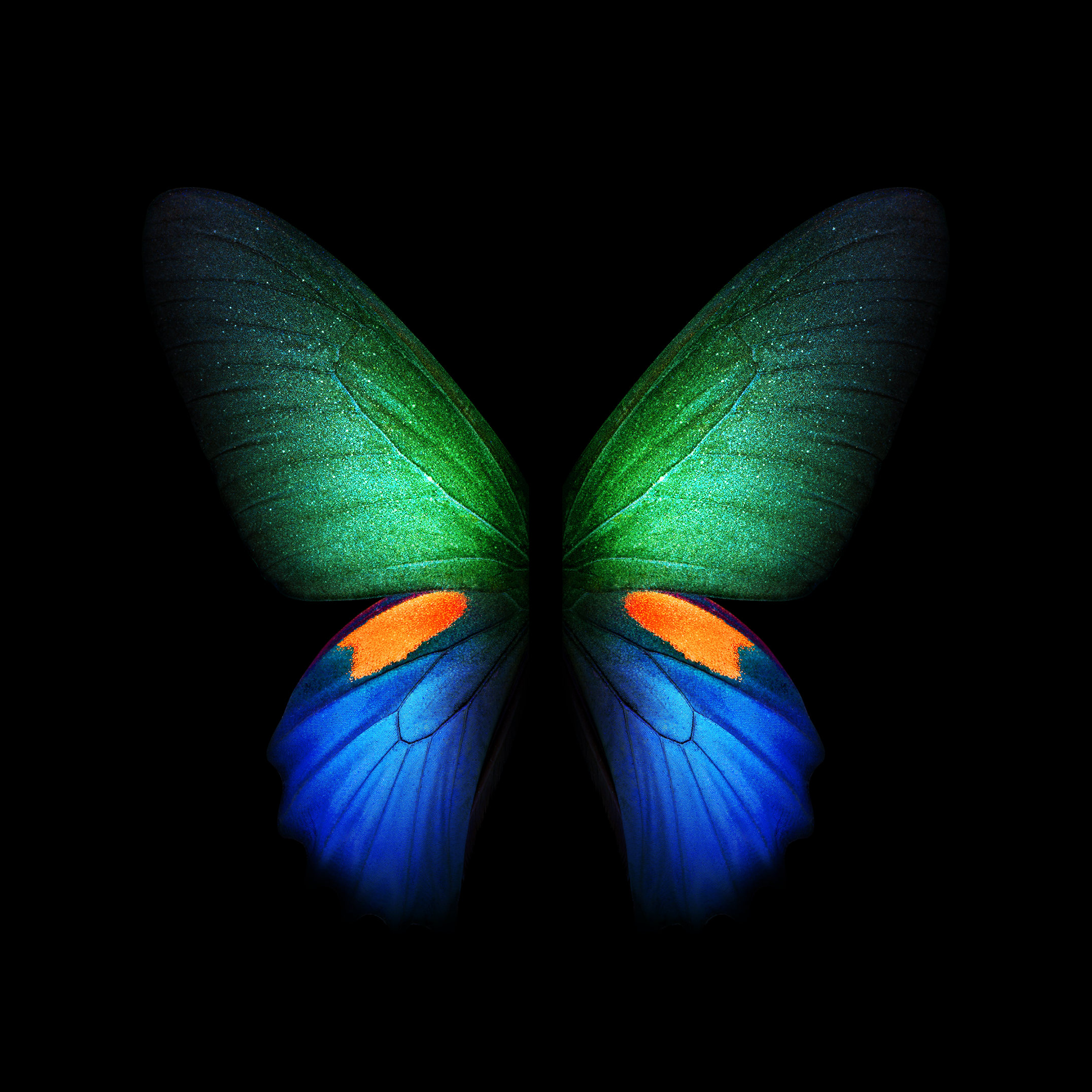 Download Samsung Galaxy Fold Wallpaper Sammobile